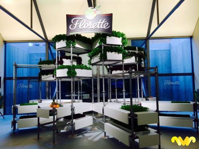 florette-vittalia-espacio