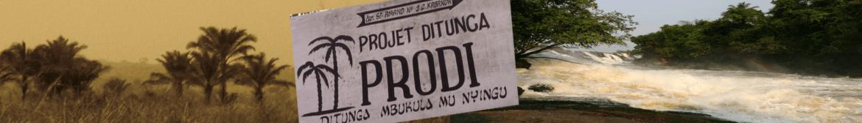 """Proyecto Ditunga (PRODI) Significa """"Mi Tierra"""" es una ONG creada en 2.006 con la finalidad de apoyar a las comunidades rurales en la República Democrática del Congo."""