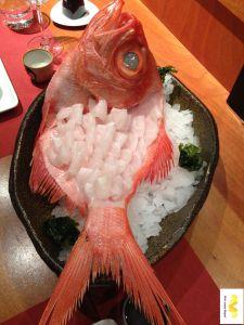 Sashimi de virrey. Restaurante Kabuki