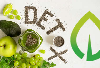 10 Day  Cleanse and Detox