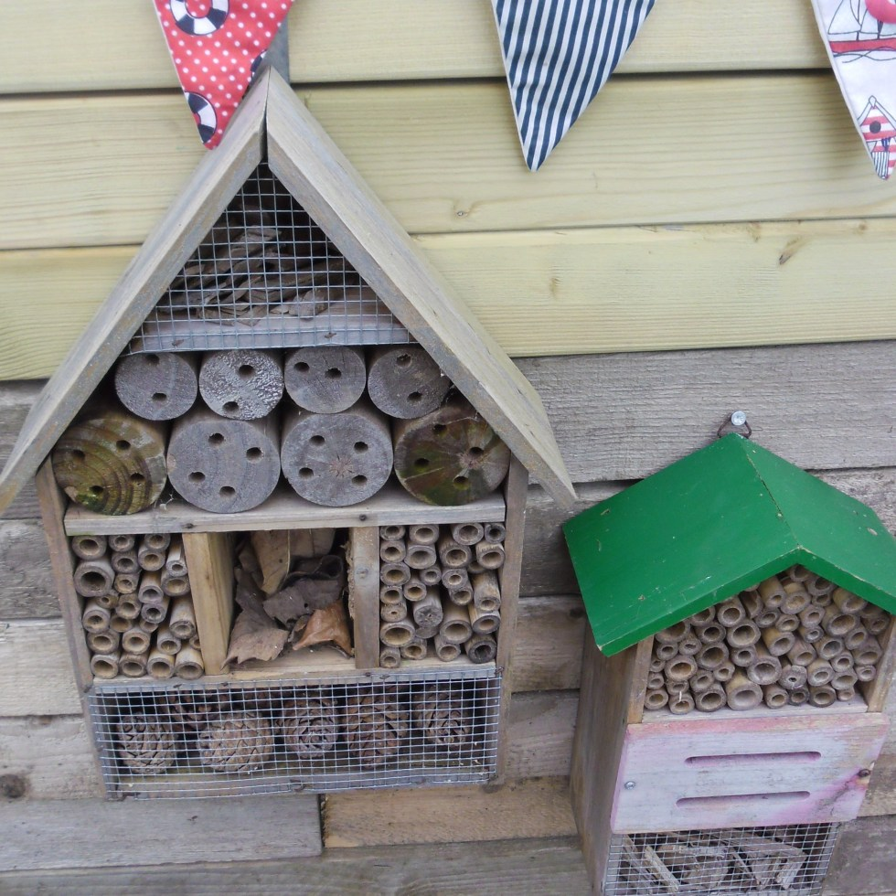 Apr - insect house2