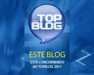 top_blog2011