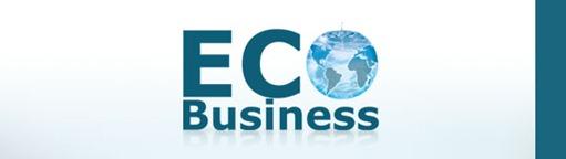 z_ecobusiness2011