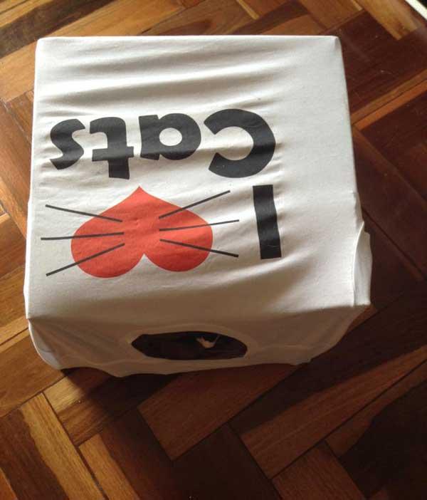 Casinha de gato feita com caixa e camisa velha|Fonte: Tudo Interessante