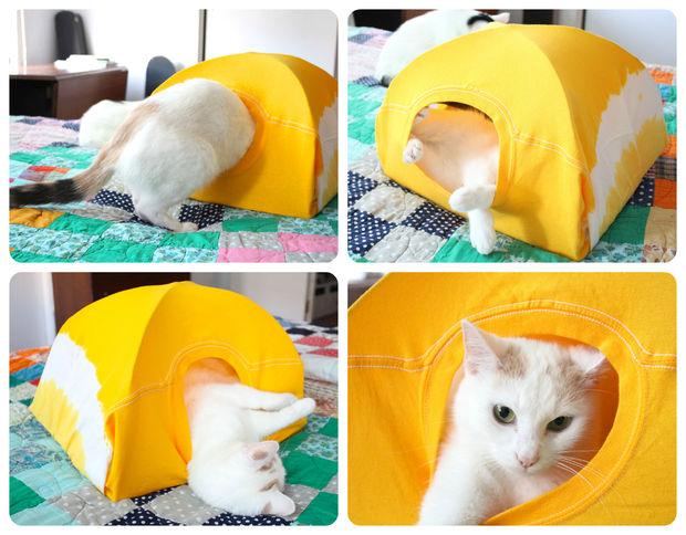 Casinha de gato sustentável Fonte: Monte Castelo