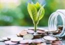 Até que ponto os modelos de startups ambientais são realmente verdes?