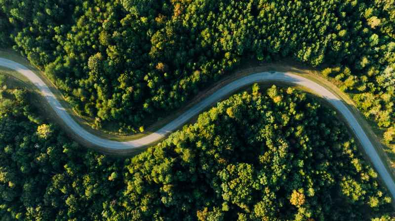 aerial photo of empty meandering road in between forest