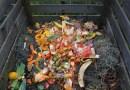 A importância da compostagem para a saúde