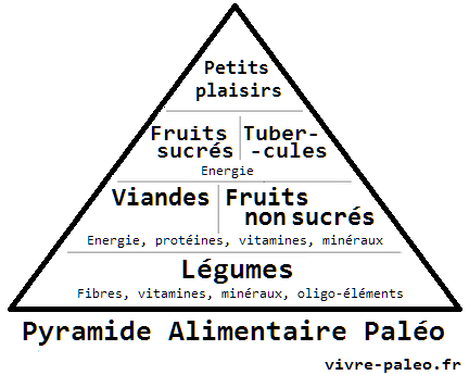 https://i1.wp.com/vivre-paleo.fr/wp-content/uploads/2013/07/La-pyramide-alimentaire-pal%C3%A9o.png