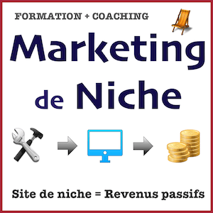 Formation Marketing de niche