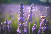 Sault