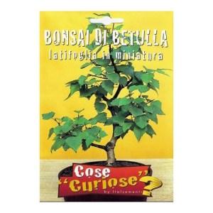 Bonsai Breza