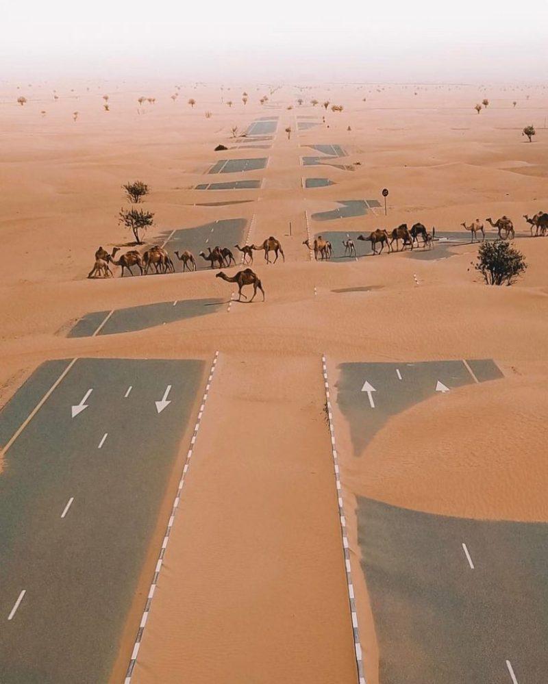 Настоящая глубина пустыни Сахара и размер с пол России. Фото - границы пустыни и океана  Размер пустыни Сахара как пол России и она постоянно движется поглощая пригодные для жизни территории. Какой глубины песок в пустыне, что находится под барханами и как выглядит граница пустыни и океана в фотографиях.
