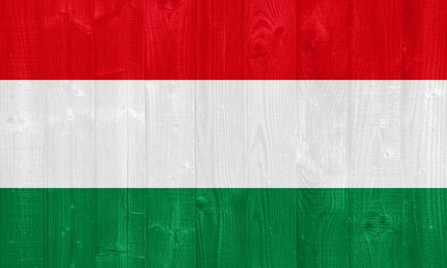 Magyar víztisztító
