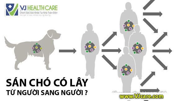 sán chó có lây từ người sang người không bệnh sán chó có lây không ASIA Health  Bệnh sán chó có lây từ người sang người không thưa bác sĩ? s  n ch   c   l  y t    ng     i sang ng     i kh  ng b   nh s  n ch   c   l  y kh  ng ASIA Health