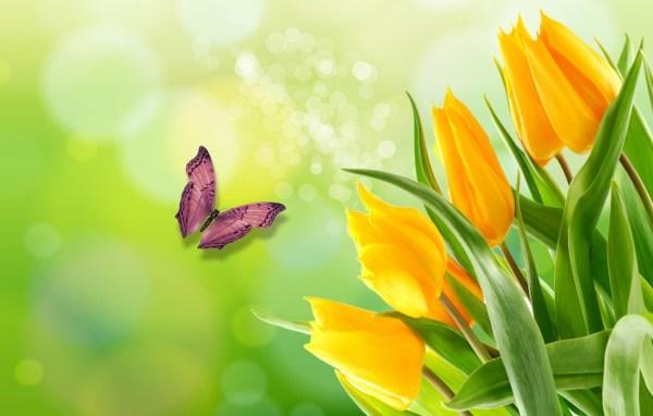 Красивые картинки весна на рабочий стол (38 фото ...