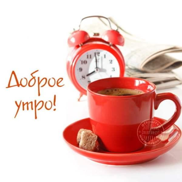 Красивые картинки «Доброе утро в среду» (35 фото ...