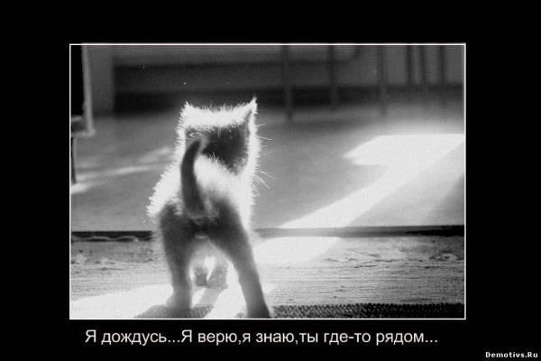 Прикольные картинки про любовь на расстоянии (36 фото ...