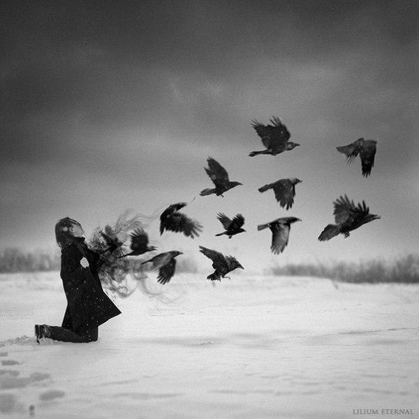 Красивые черно-белые картинки (45 фото) • Развлекательные ...