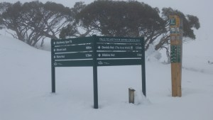The trail intersection on the edge of the Mt Hotham resort