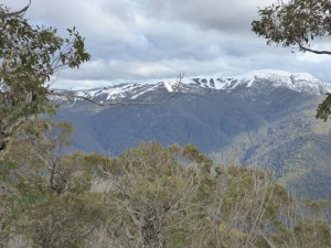 Looking towards Mt Buller