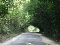 Alofi Namukulu Road