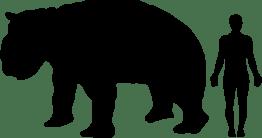 891px-diprotodon-human_size_comparison-svg