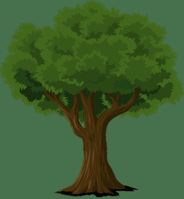 Die Gesichter unserer Bäume
