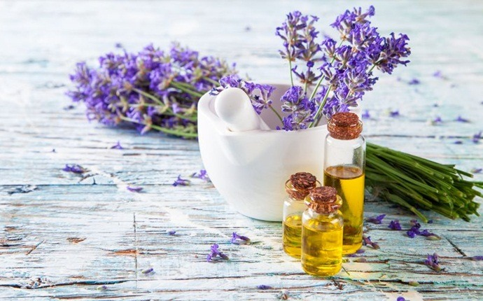 chamomile and lavender oil