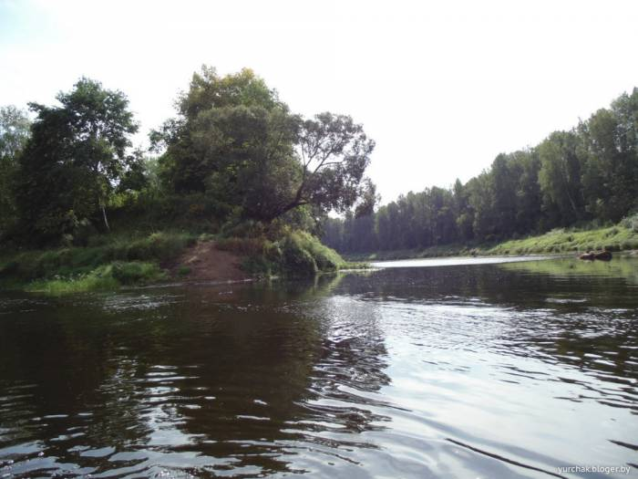 Човны, шкуты, струги. Почему Двина в Витебске такая мелкая?