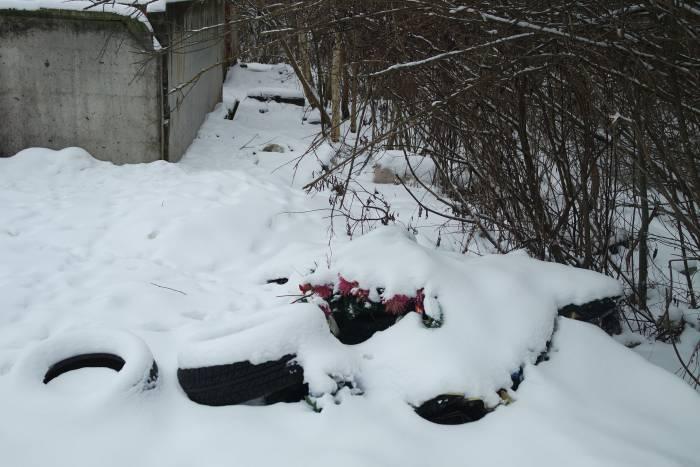 свалка в Мазурино кладбище