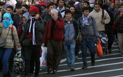 """Vlaams Belang Europa wil met petitie """"tweede Marrakesh-pact"""" tegenhouden"""