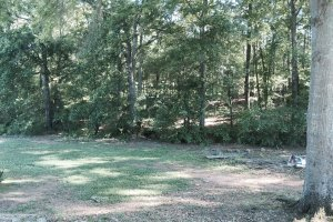 2425 Bear Creek Drive, Statham, GA 30666 _9
