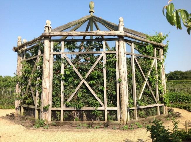 Octagonal fruit cage