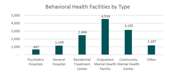 by the numbers largest behavioral health providers - 1125×475