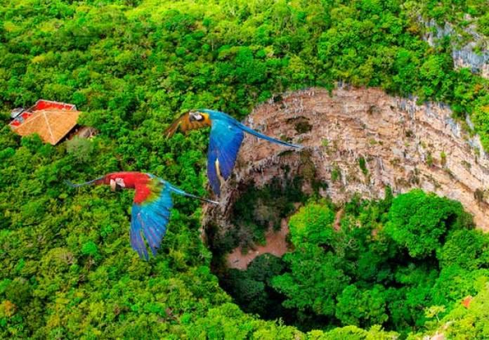 VM Viajar® por Chiapas 4 días | Viajes a Chiapas México | Paquetes a Chiapas