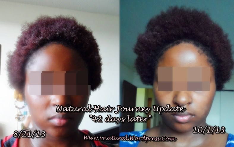 Hair Journey Update Growth Baggy MethodGreenhouse