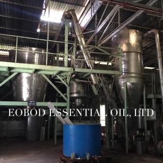 manufacturer essential oil in VN