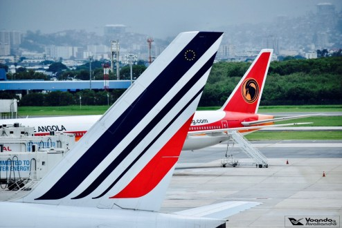 B777_Air France - Cauda