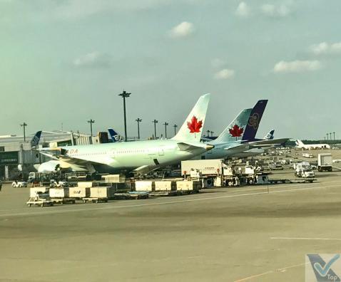 Taxiando - Narita - B787 - ANZ (3)