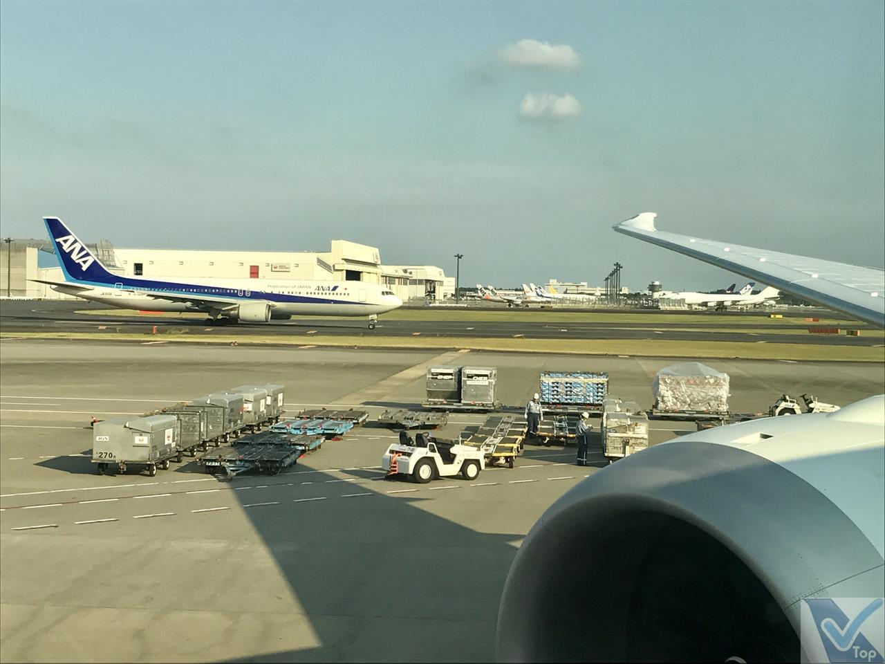 Taxiando - Narita - B787 - ANZ (4)
