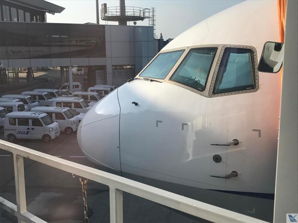 B767 - ANA - Narita 2