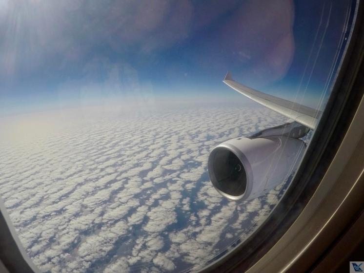 Asa-Motor-A330-TAP-REC-LIS-7-1