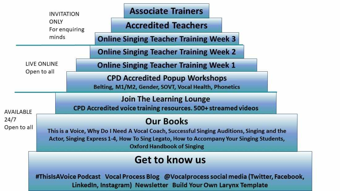 Vocal Process Ziggurat - a stepped pyramid diagram showing different levels of voice training