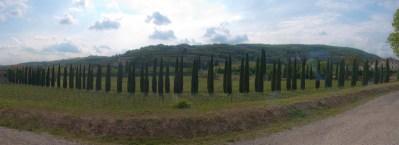 Azienda Agricola Marion