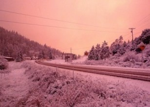 snow-in-pink1