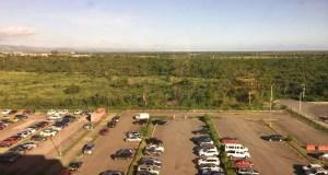 Así luce el Tribunal de Ponce sin árboles. (Suministrada / Coamar)