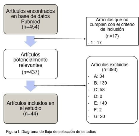 EFECTOS DEL EJERCICIO FÍSICO EN EL SISTEMA INMUNOLÓGICO