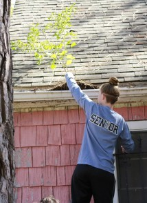Cleaning house gutters
