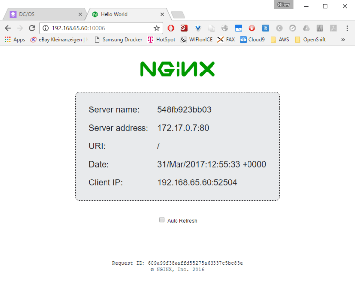 NginX Hostname - Container 1
